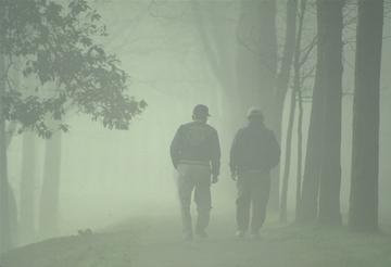 Men Walking in the Woods